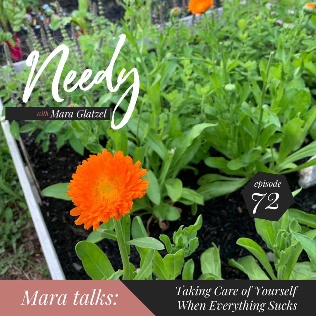 What to do when everything sucks, a Needy podcast conversation with host Mara Glatzel